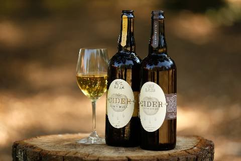 Article image for 6 Favorite Ciders from Sonoma County