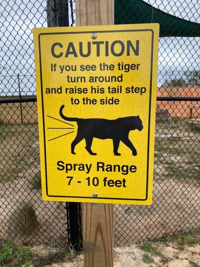 ?url=https%3A%2F%2Fi.chzbgr.com%2Ffull%2F9594212096%2Fh7D478A16%2Fanimal-caution-if-see-tiger-turn-around-and-raise-his-tail-step-side-spray-range-7-10-feet-3d&w=2800
